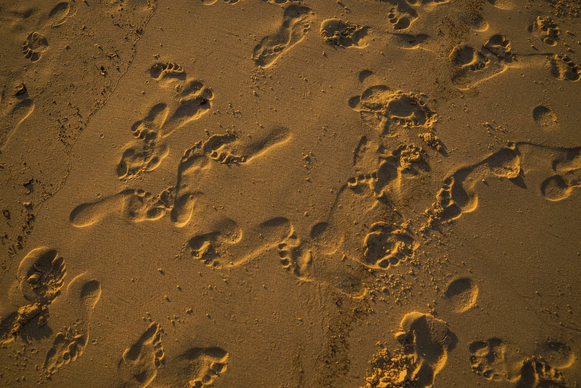 รอยเท้าบนหาดทราย